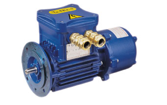 FLAME-EXPLOSION PROOF MOTOR CEMP